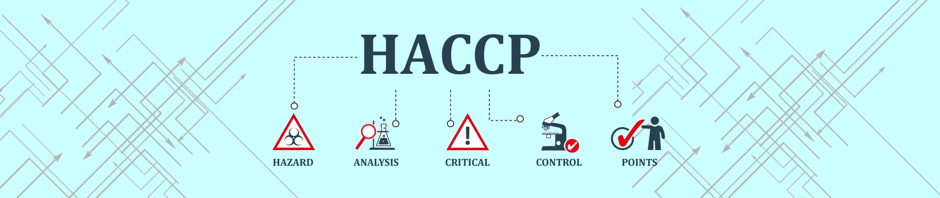 HAccp sicurezza alimentare